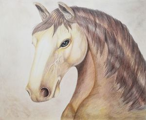 Pale Horse Portrait