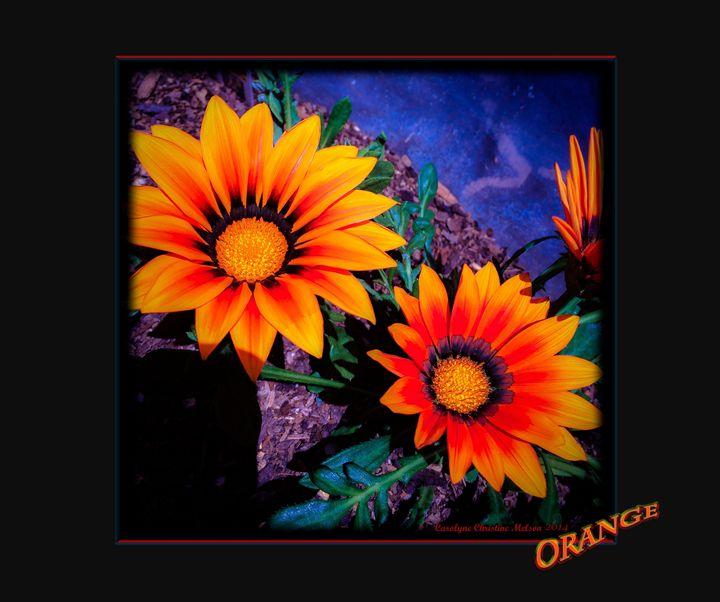 Orange! - My Naenia Art by Carolyne Christine