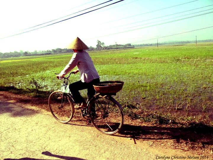 Country Road In Vietnam - My Naenia Art by Carolyne Christine