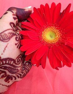 Hena & Flower