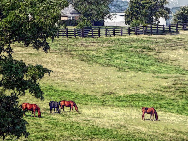 FWC Horse Country - Aimee L Maher