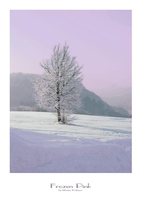 Frozen Pink - Martina Rathgens Art & Photography