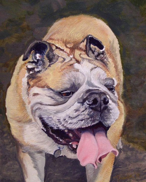Bulldog - Tanger Studio