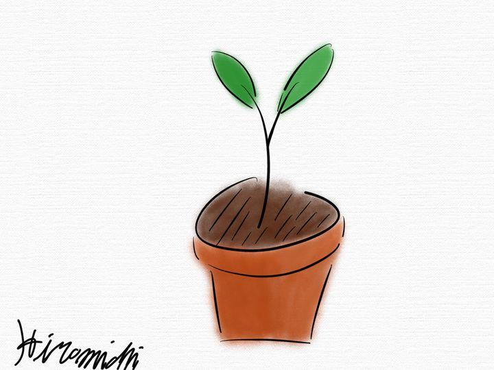 A Plant in Pot - Hiromichi