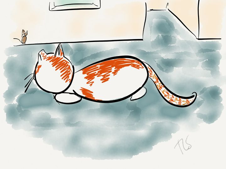 Sunshine Stalks the Mouse - Sunshine's Doodles