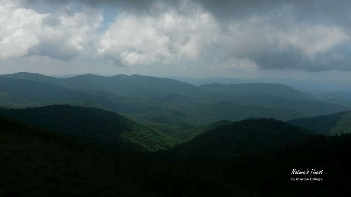 Great Smoky Mountains - Nature's Finest by Maxine Billings