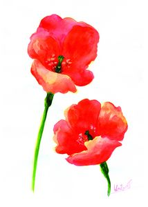 Poppy art,Japanese flowers drawing,