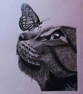 Beautiful cat sketch