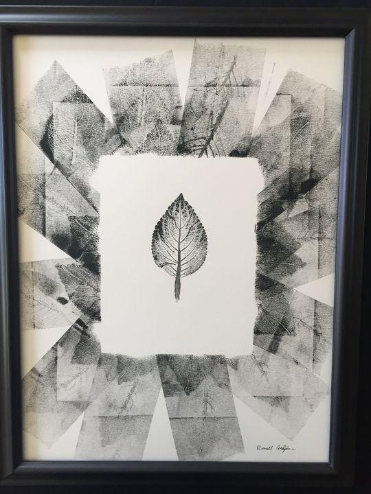 Coleus Array I - Botany Bear Art