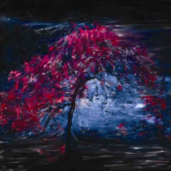 Night Blossem - Digital Images Gallery