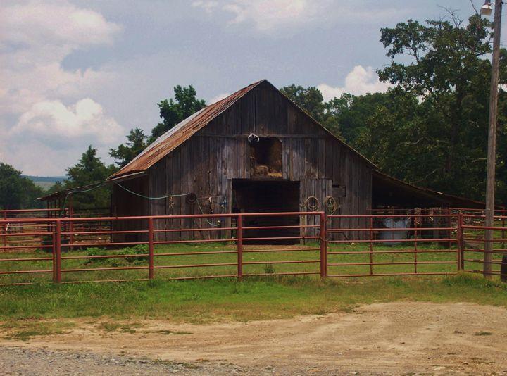 Old Barn - The Lemon Tree