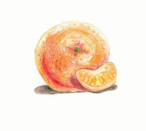 Still Life of an Orange