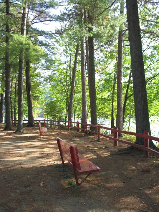 Red Benches with a View - Claude Chapdelaine Fine Arts