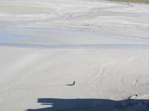 Mont-Saint-Michel, Walker, Low Tide