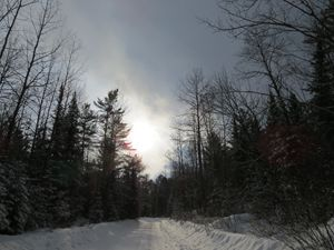 Winter Country Scene
