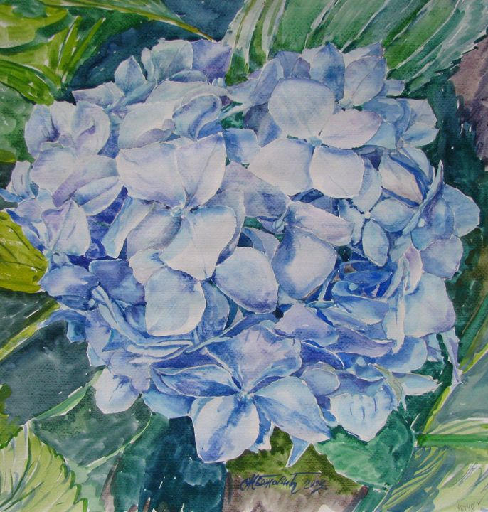 Hydrangea - Artworks by Slobodan Z. Bozovic