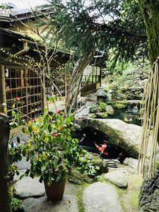 Zen garden, 2018