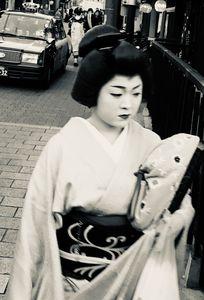 Young Apprentice Geisha N.2, 2018