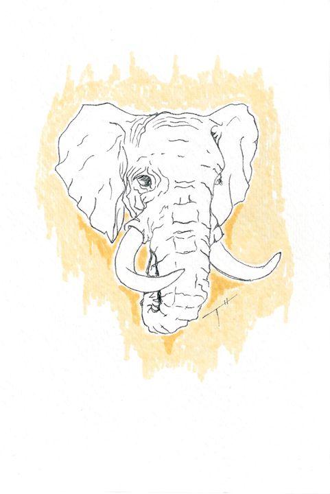 Elephant (prints) - Tory Andrew Hurtado