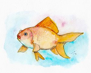 Goldfish (prints)