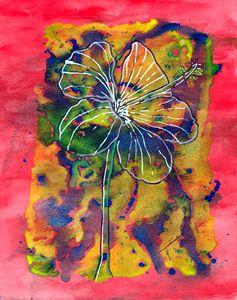 Hibiscus (prints)