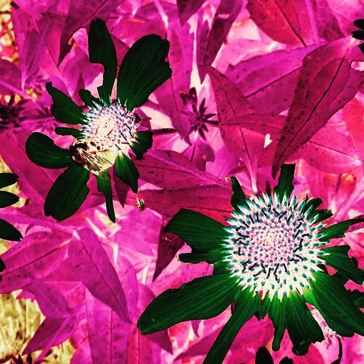 Floral Piece I - Wendy McReynolds