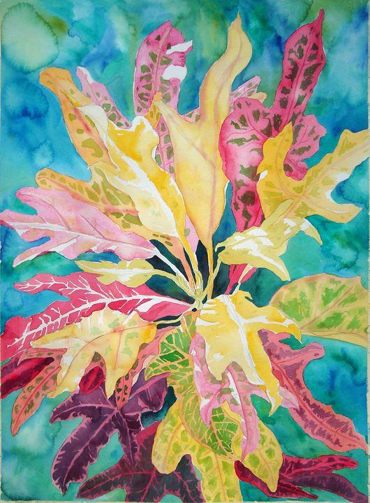 Burst of Crotons - JoPoLo