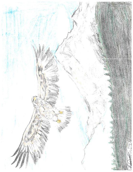 Golden Eagle in Flight - Inside the Mind of Crazy Owl