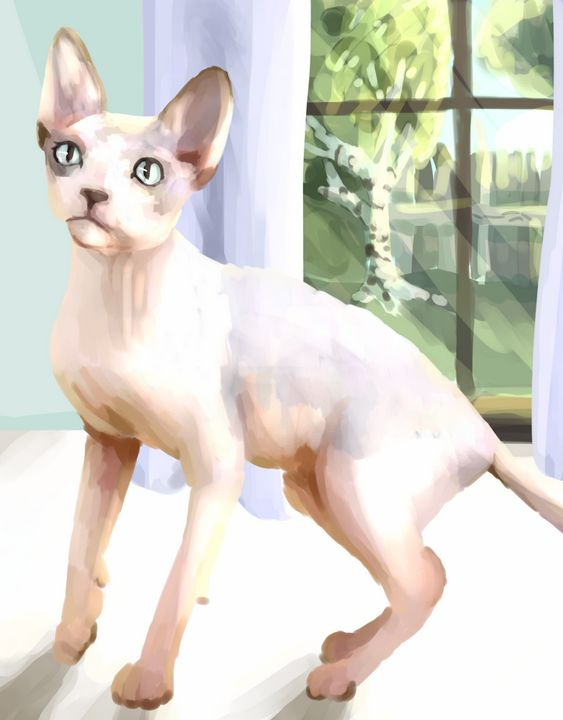 The Sphynx - DrizzPink