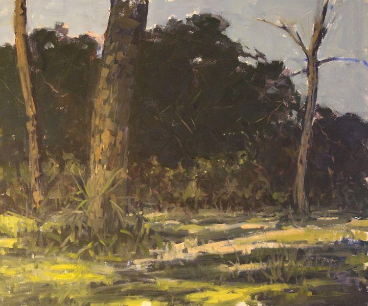 Florida woods - Berto Ortega