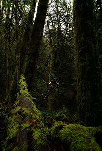 Airborne Ian - Ike Bancroft Photography