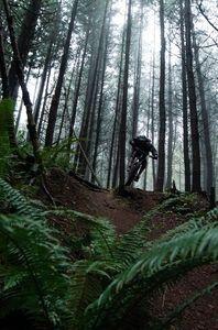 Fog Riding - Ike Bancroft Photography