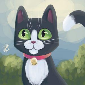Tuxedo Kitty