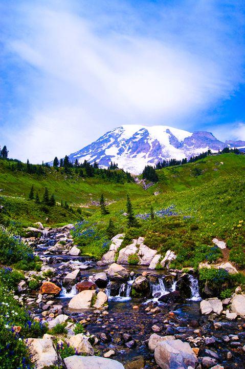 Mount Rainer - No good at photography