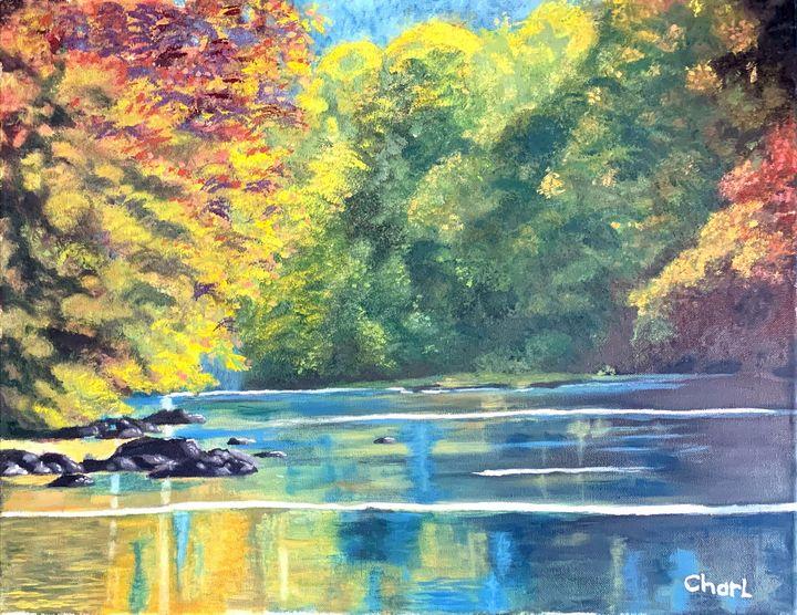 A quiet stream - Charl John Ruiters