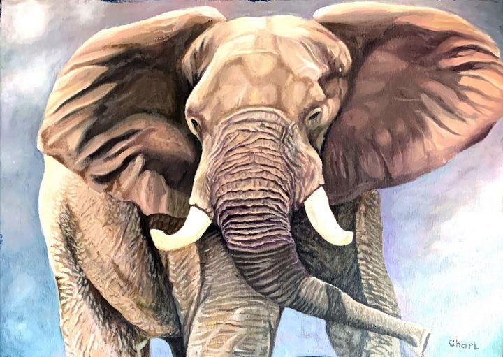 The elephant - Charl John Ruiters