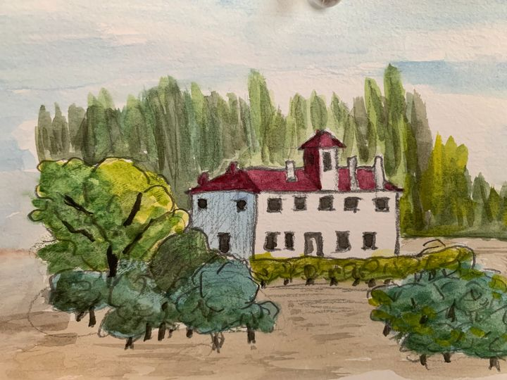 Estate with olive trees - Algay