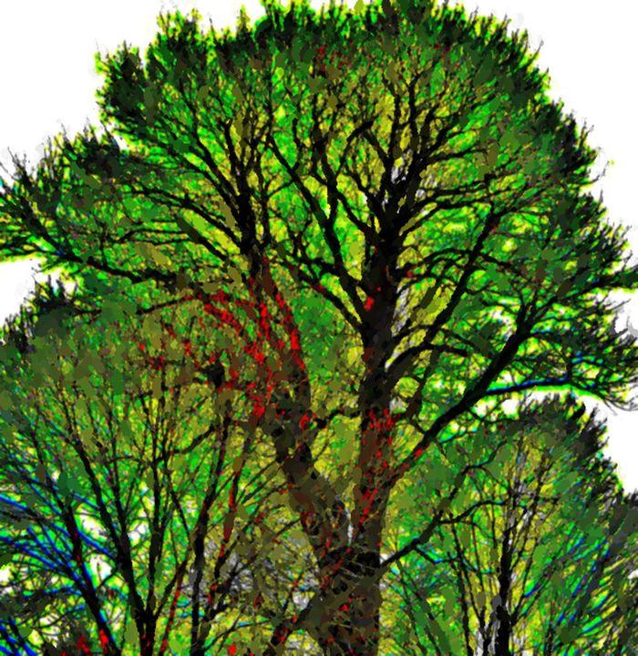 Tree of Life - dbJR