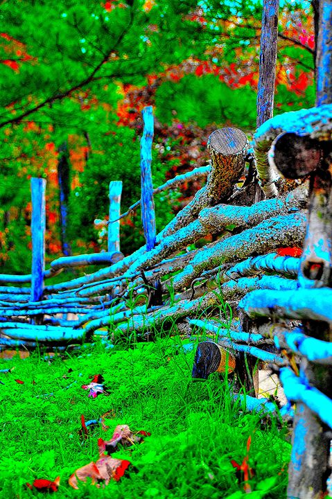The country fence. - dbJR
