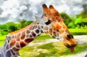 KISSES for you - dbJR