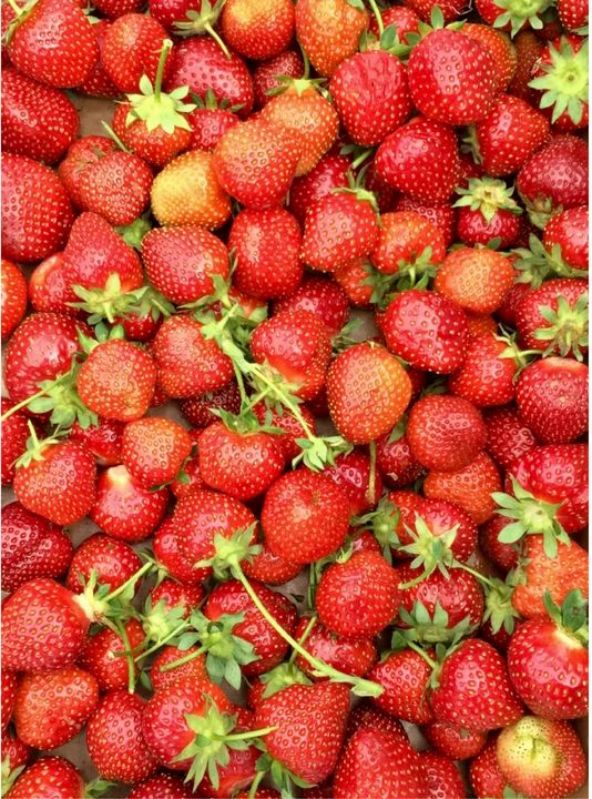 Strawberries - Crystalline Cardinal