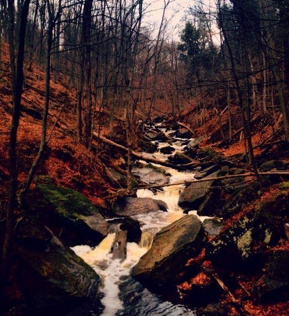 changing seasons - Nature porn