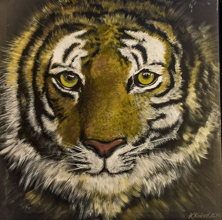 Eye of the Tiger - Kimberly Rideout