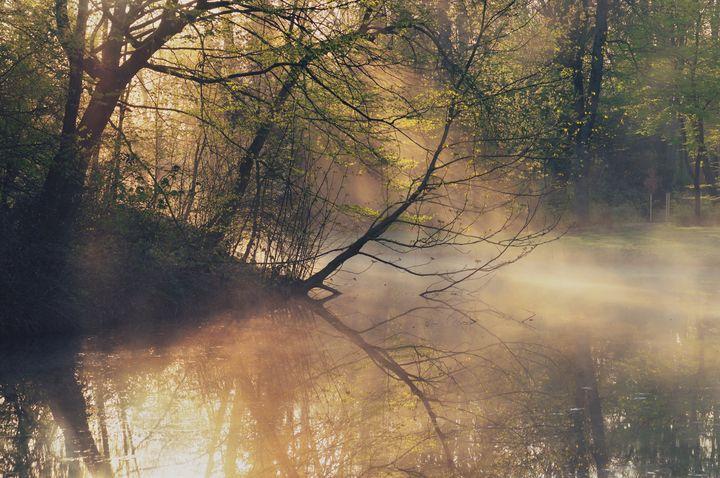 Haze of Light - Alex Sol