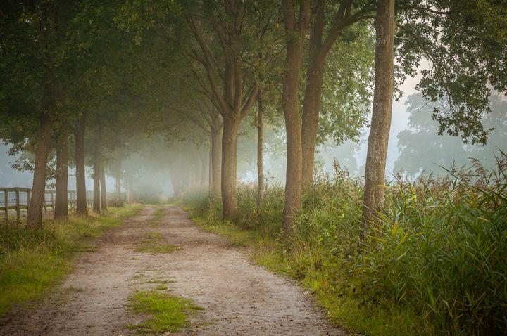 The Windless Path - Alex Sol
