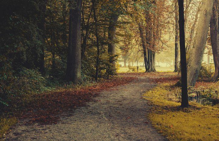 Autumn in the Park - Aleksander Solarski
