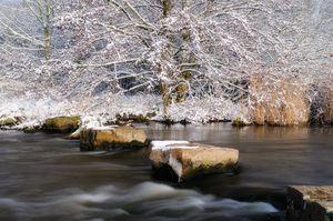 Intimate Winter