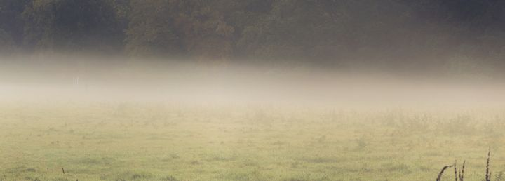 Hidden by Mist - Alex Sol