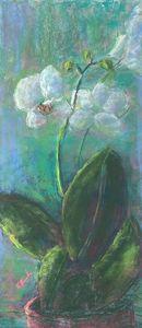 Purity - Elaine Benevides Pastel Artist