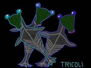 Tricoli
